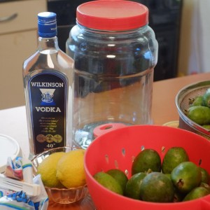 homemade requor